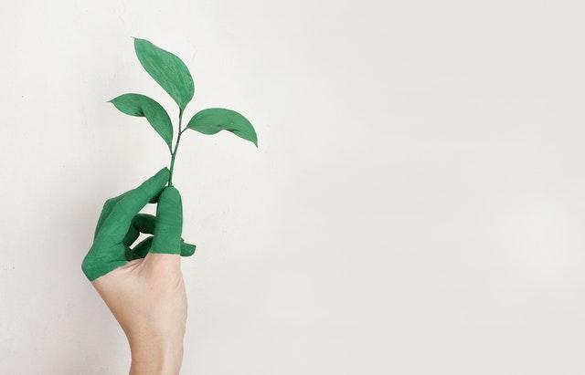 Energie verte : pompe à chaleur